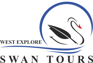 LOGO SWAN TOURS png1 - Copy